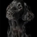 06 Portrait_SallyKilpin