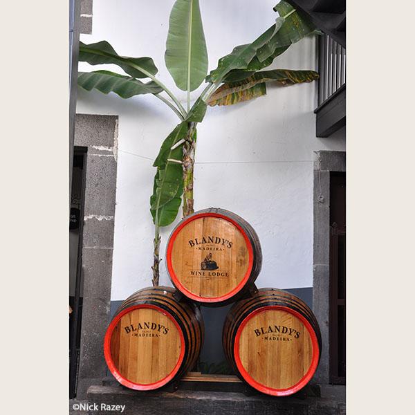 Madeira wine barrels - Nick Razey