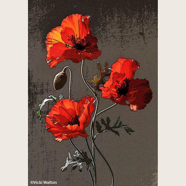 Red Trio - Vicki Walton