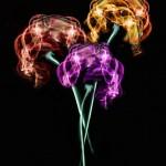 Smoke Bouquet Kathy Chantler