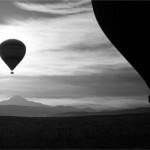 Bev Wareing - Balloons
