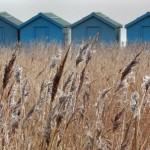 Bev Wareing - Beach Huts