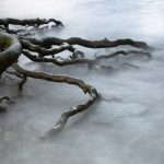 """What Lies Beneath"" by Chris Andrews – ImageZ CC"