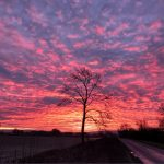 """Daybreak"" by Chris Andrews"