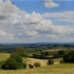 View to the Chilterns by Mike Ward
