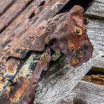 Rusty on the Roof © Jan Dell