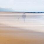 Walking the Dog © John Timbrell