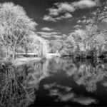 Surreal Eythrope © Chris Andrews