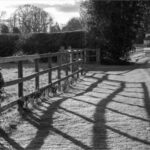 Long Shadows © Jan Dell