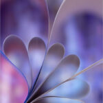 Paper©Barry Coxon