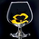 Brandy Glass 2 A IMG_2655