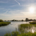 Summer meeting – Tring Reservoirs