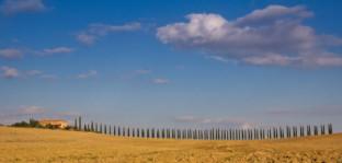 America and Tuscany – By John Gravett